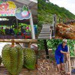 เที่ยวสวนผลไม้ ระยอง-จันทบุรี