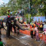 สงกรานต์กรุงเก่า เล่นน้ำกับช้าง วันที่ 13-15 เมษายน 2562